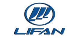 Автомобильные коврики для Lifan